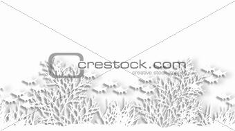 Cutout reef