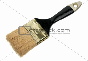 Single brush with black wood handle