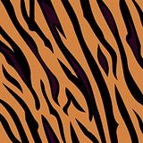 Animal background pattern - tiger skin texture