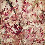 Grunge pink blossom background