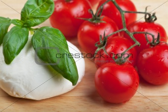 tomatoes, mozzarella, basil and red wine