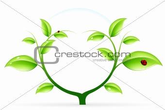 Green ecology