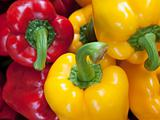 Red Yellow Green BellPepper