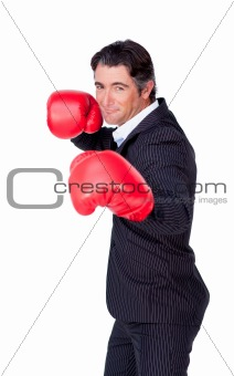 Attractive businessman wearing boxing gloves