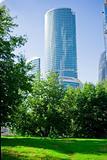 skyscraper and Nature