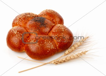 single fresh bread with corn