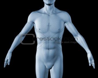 3d human