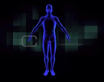 3d human scanner