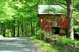 Red barn in the woods