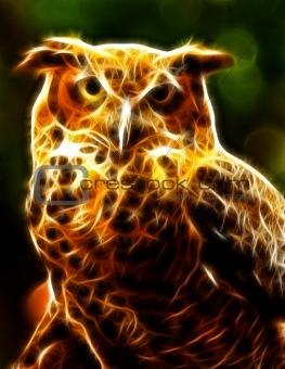 Glowing owl