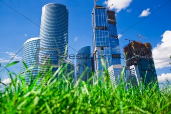 Skyscrapers and grass