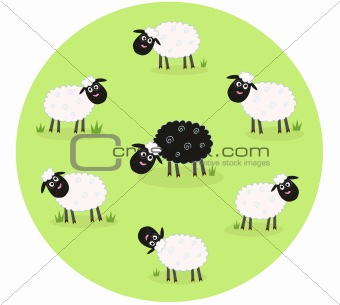 One black sheep is lonely in the middle of white sheep family