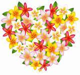 Heart From Fragipani