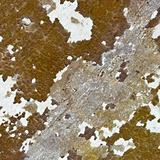 Weathered wall - background