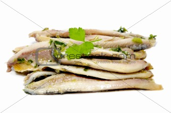 anchovies in vinegar