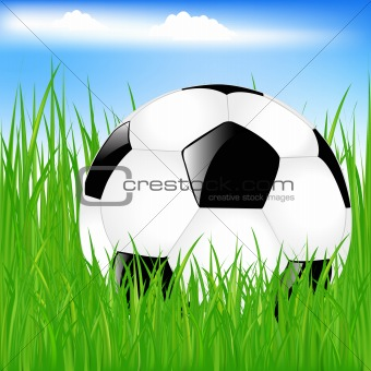Classic Soccer Ball In Grass