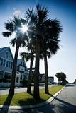 Houses on Bald Head Island, North Carolina.