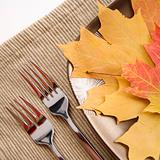 Table setting with multicolor leaves as main meal.