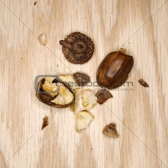 Crushed acorn.