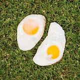 Two fried eggs on grass.
