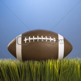 Football resting in grass.