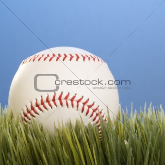 A baseball resting in grass.