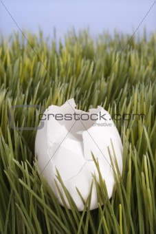 A broken white egg laying in grass.