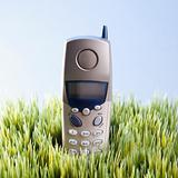 Landline telephone placed in grass.