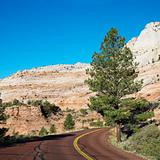 Road along desert cliffs in Zion National Park, Utah.