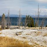 Shoreline at Yellowstone National Park, Wyoming.