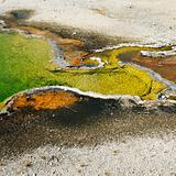 Geyser basin in Yellowstone National Park, Wyoming.
