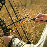 Bow hunter hands on compound bow.