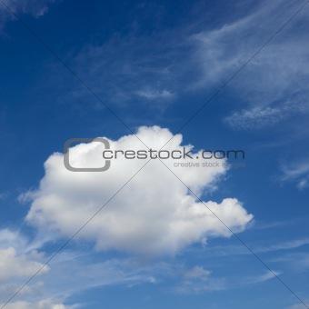 Cumulus cloud in blue sky.