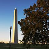 Washington Monument in Washington, D.C., USA.