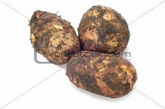 potatoes in their skin