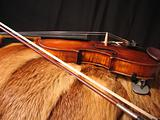 violin on the fur-coat