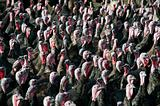 Turky flock