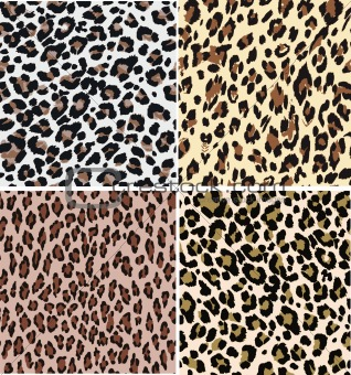 seamless fashion leopard pattern
