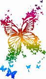 butterfly with rainbow color