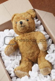 Teddy bear transport