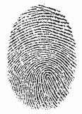 fingerprint 2