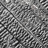 Wooden wall blackened after fire - texture