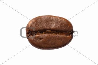 One coffee bean