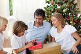 Cheerful family celebrating Christmas