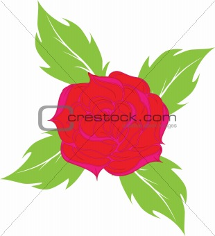 Background from a rose.Vector illustration