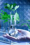 Ecology laboratory experiment