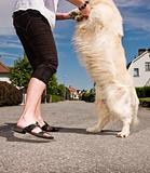 Woman dancing with a dog