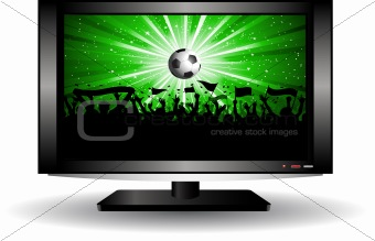 football crowd on LCD television