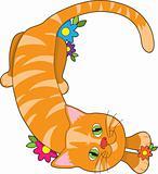 Alphabet Animal C