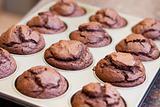 Twelve freshly baked chocolate muffins